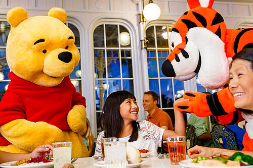 Disney dining experience