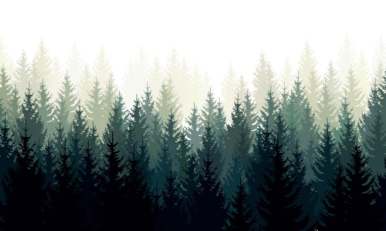 What Is Evergreen Content? (+11 Content Types That Drive Traffic)