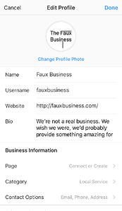 Instagram Business Profile Information