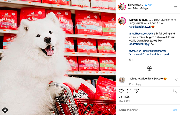 stella and chewy ig partnership ad
