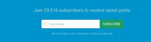 newsletter subscription lead capture form
