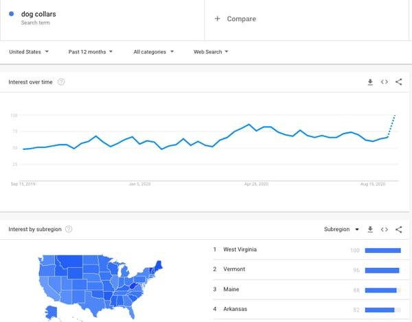 dog collars google trends