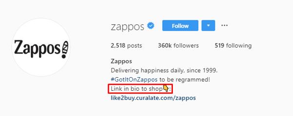 Zappos IG bio