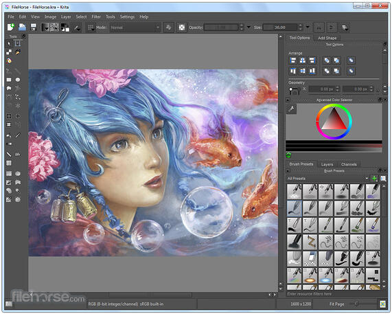 8 Best Free Graphic Design Software in 2019