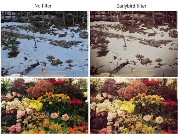 Earlybird IG filter