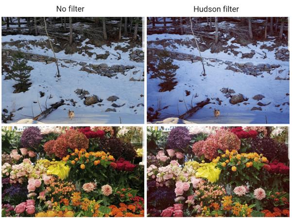 Hudson IG filter