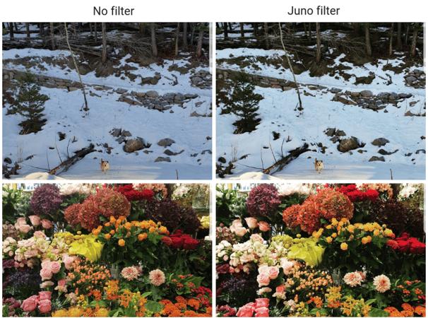 Juno filter