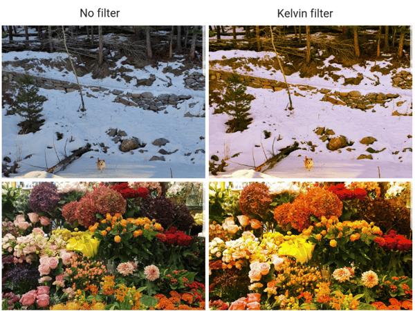 Kelvin  filter