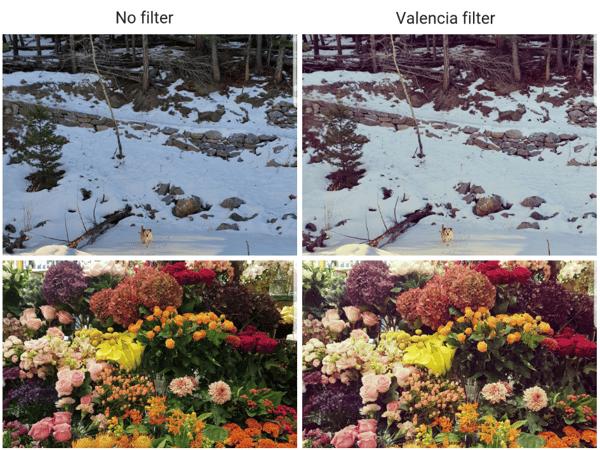 Valencia Insta filter