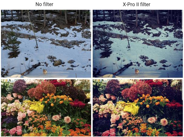 X Pro II filter on Instagram