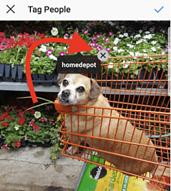 how-to-delete-instagram-tag
