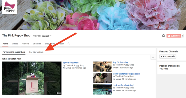 how-to-add-youtube-trailer