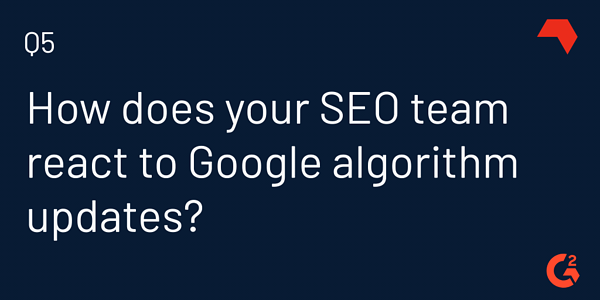 SEOs and Google algorithm updates