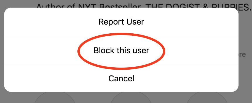 How to Block Someone on Instagram (+ What Happens After)