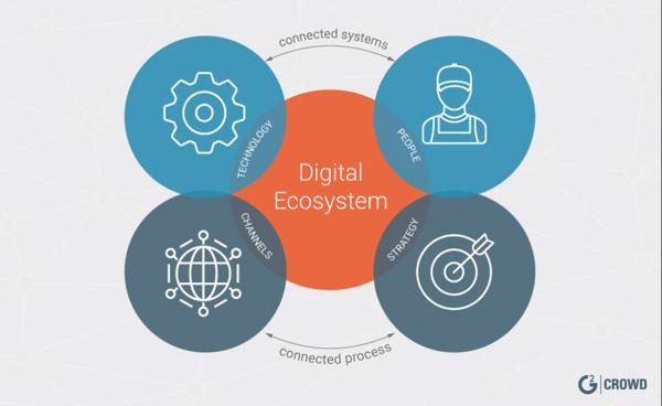 digital-ecosystem-definition-chart