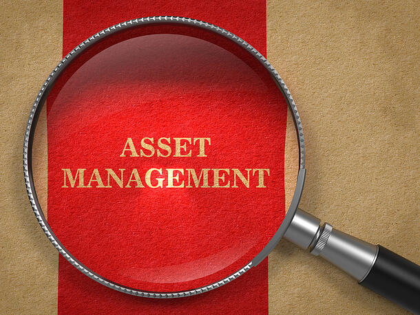 What Is Asset Management? Definition, Terms, and AM Examples