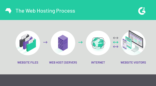 The Web Hosting Process
