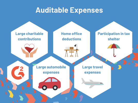 auditable expenses