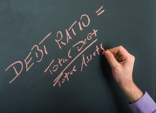 Debt Ratio: How to Find and Use it