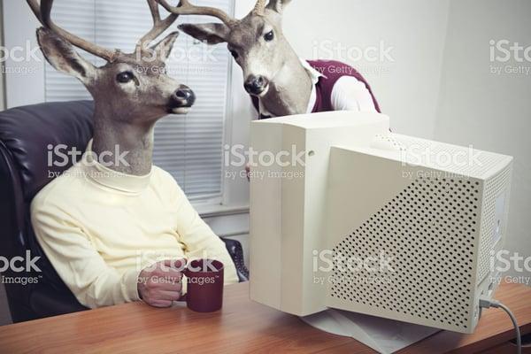 deer office workers