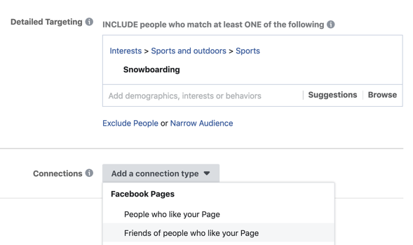 screenshot of the detailed targeting and connections section