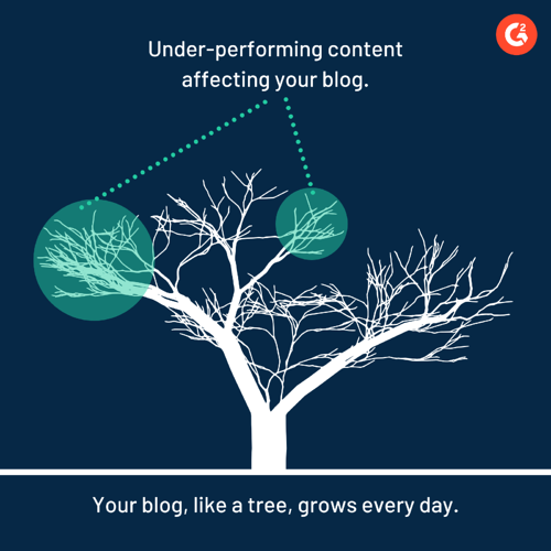 How bad content affects your blog
