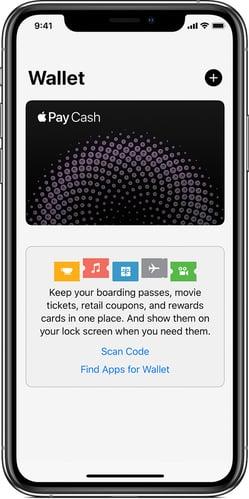 Apple Pay in Wallet app