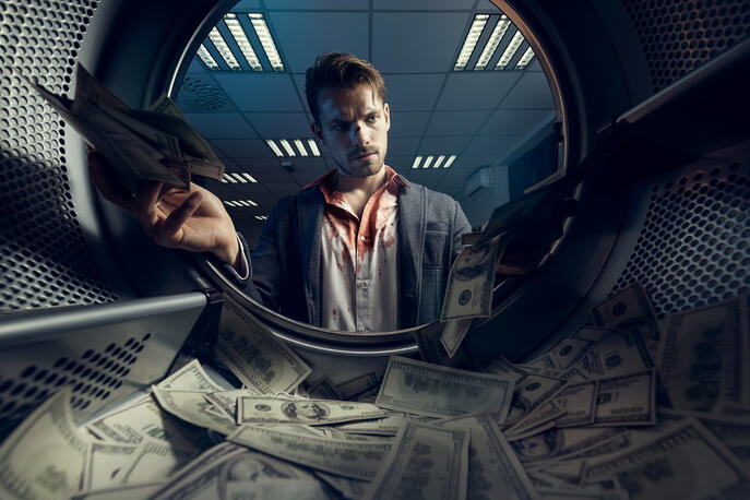 Understanding Corporate Crime: Snakes in the Grass