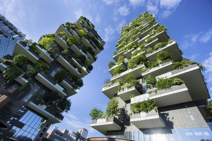 What Is Green Architecture? (+How It Informs Modern Sustainability)
