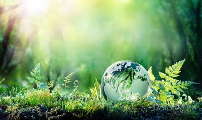 What Is Sustainability in Business? (+10 Brand Examples to Emulate)