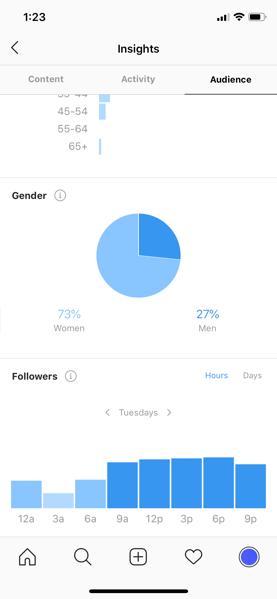 instagram follower insights