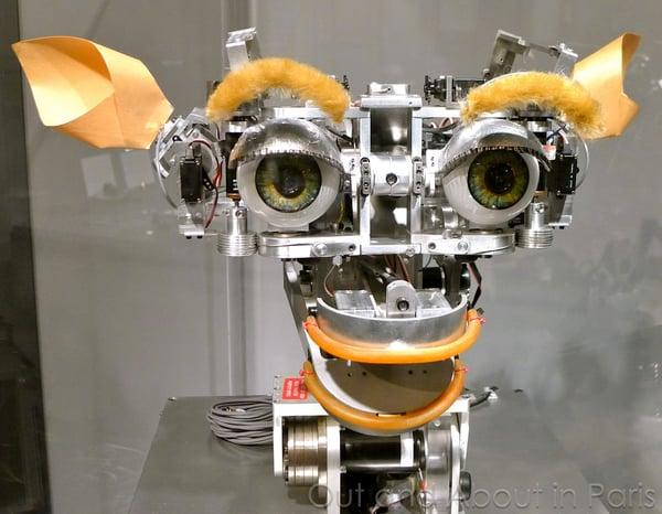 kismet_robot
