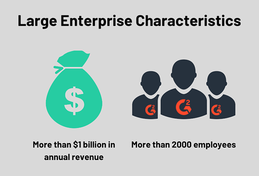 large enterprise characteristics