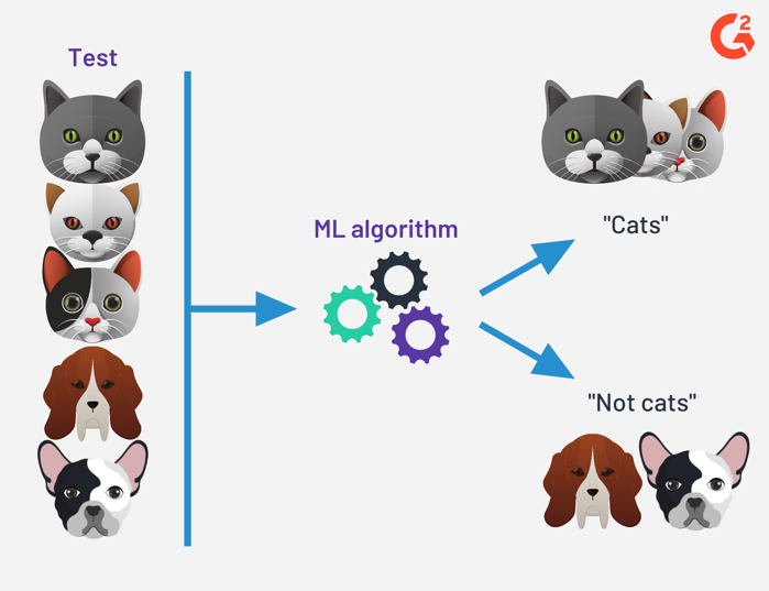 how does supervised learning work