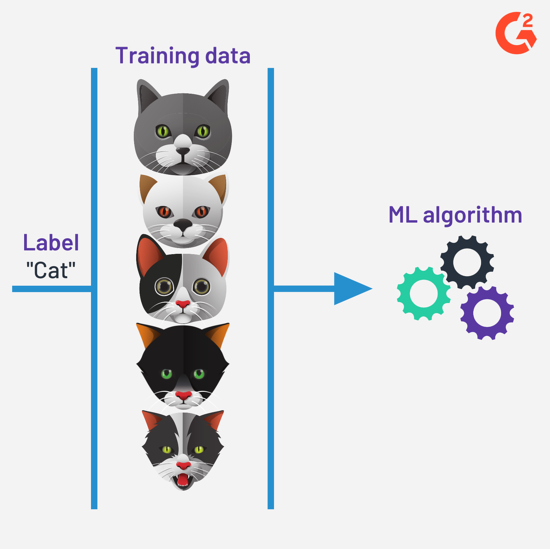 supervised learning algorithm