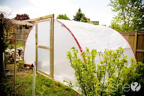 trampoline-greenhouse
