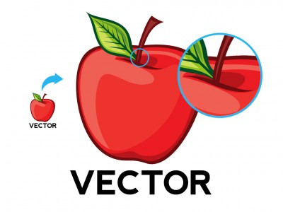vector-vs-raster