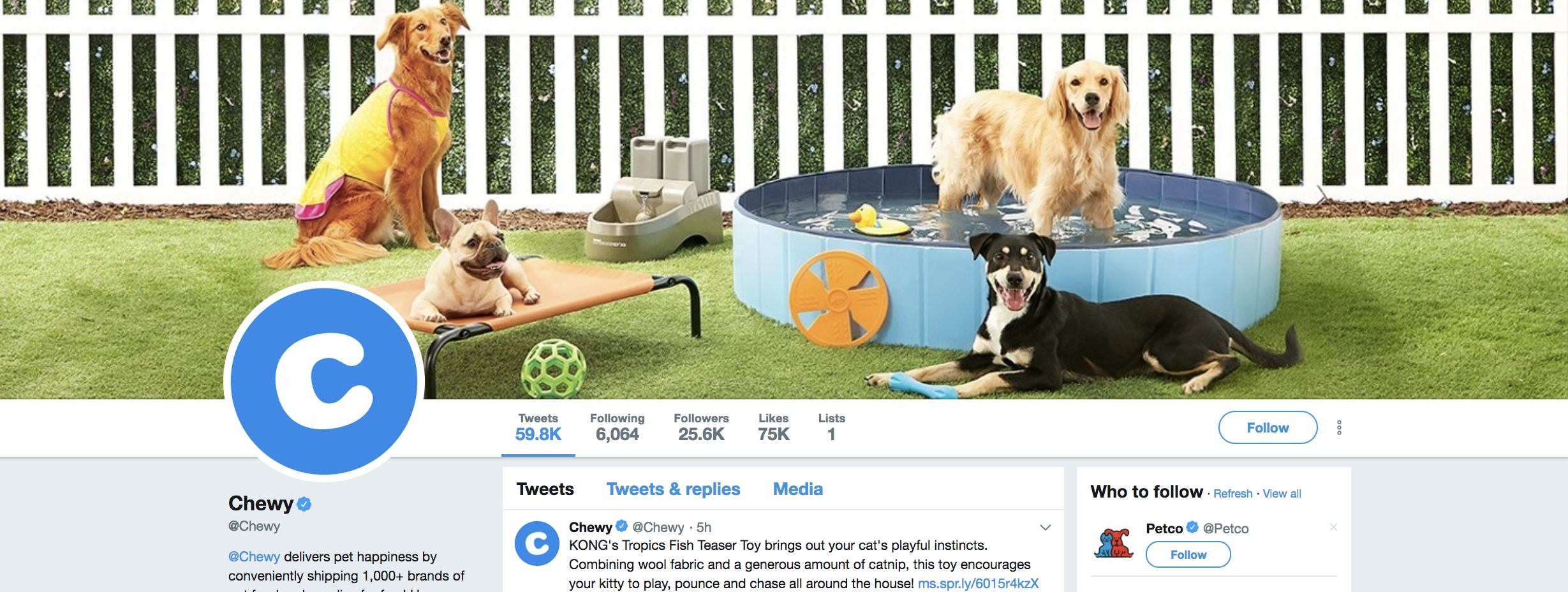 twitter-header-with-pets