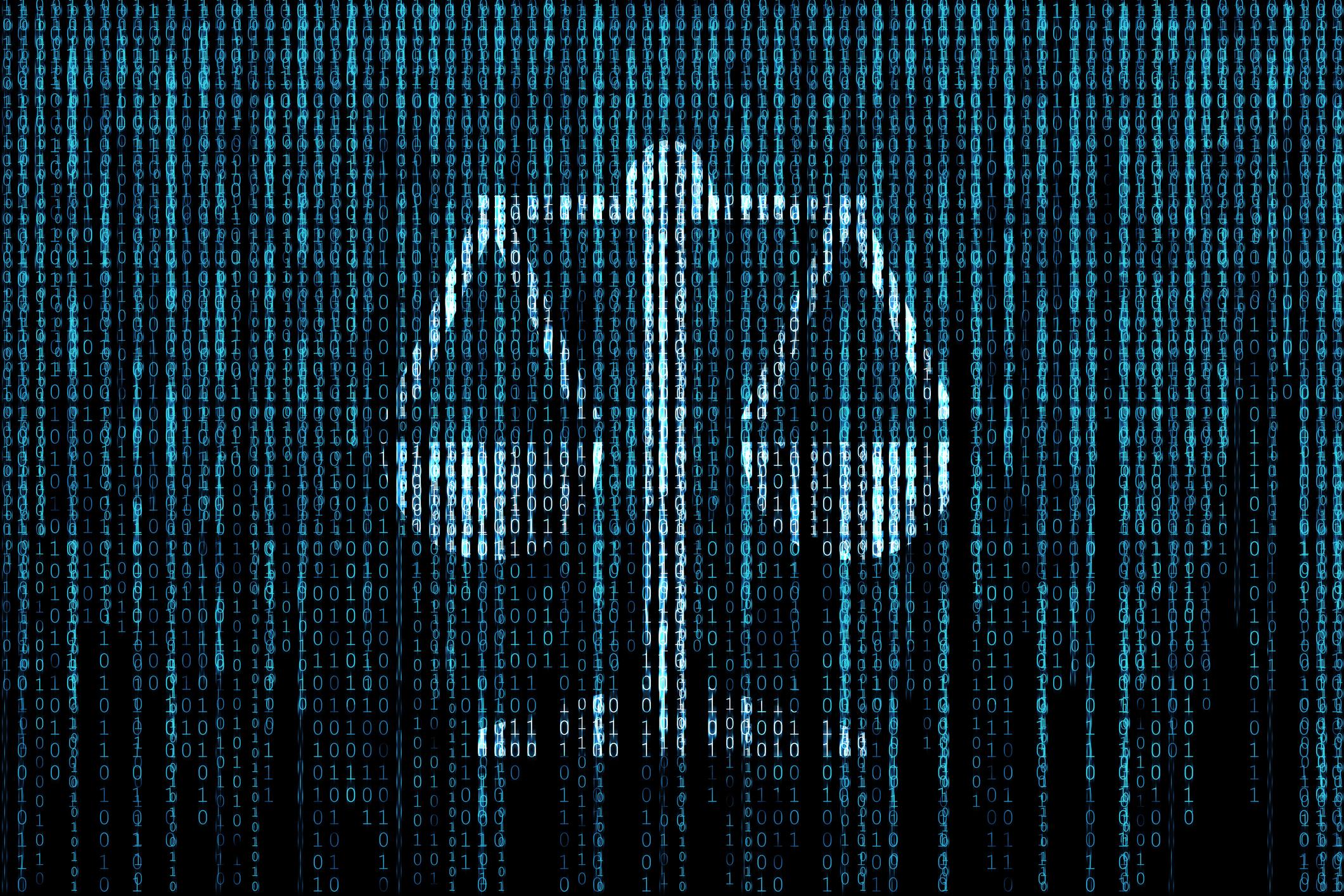 The Social Net Human behavior in cyberspace