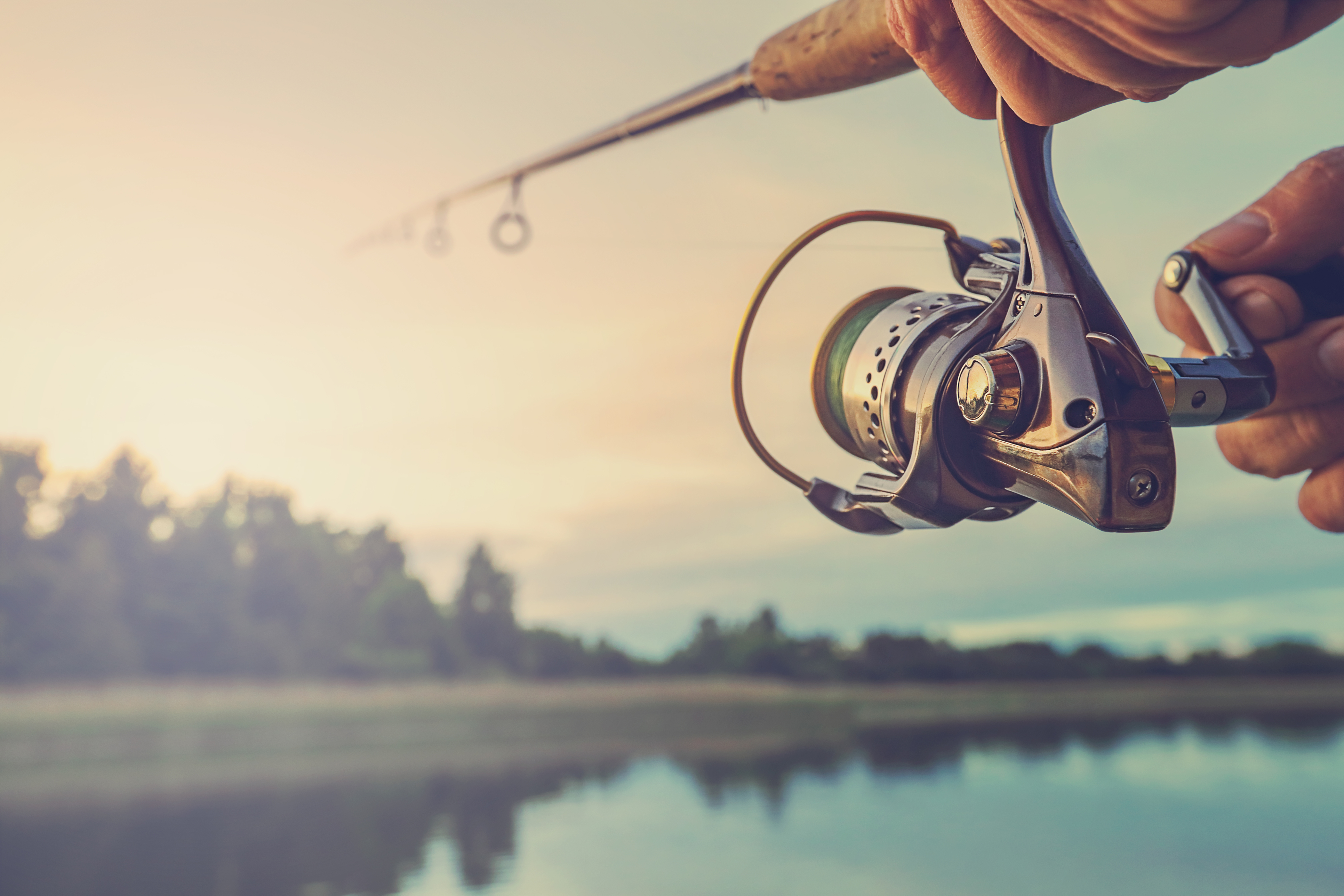 Inbound Marketing: Reel Your Audience in with This Strategy
